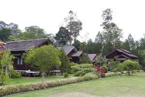 Bukit-Bangkirai-canopy-walk-3