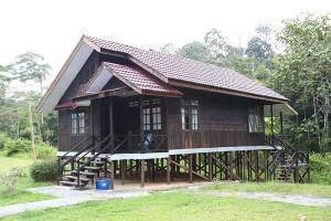 Bukit-Bangkirai-canopy-walk-4