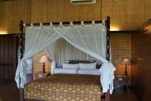 visit-myborneo-Orangutan-experience-lodge-2